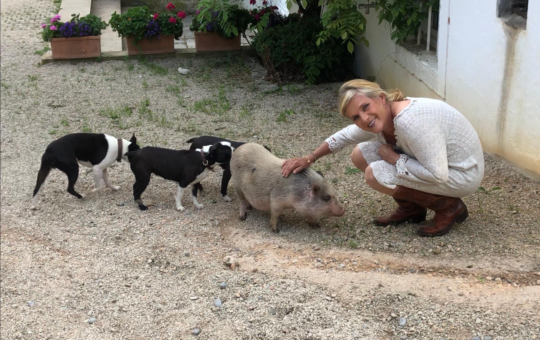 Trio mit Schwein